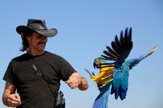 Chris Biro and Free Flying Bird